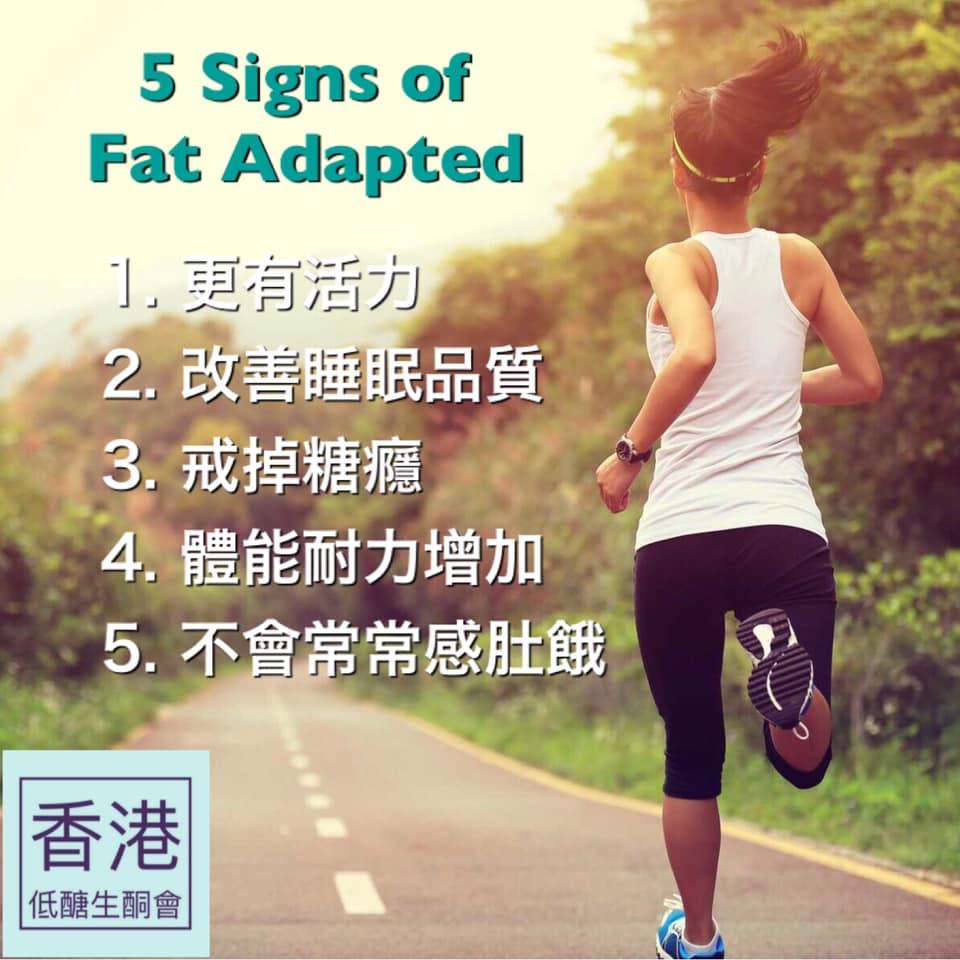 fat adapted 大約有5種身理變化。