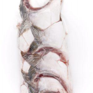 日本 尾鷲市 全月油甘魚鮫